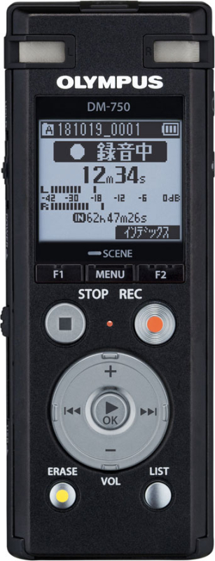 ボイストレック DM-750 BLK