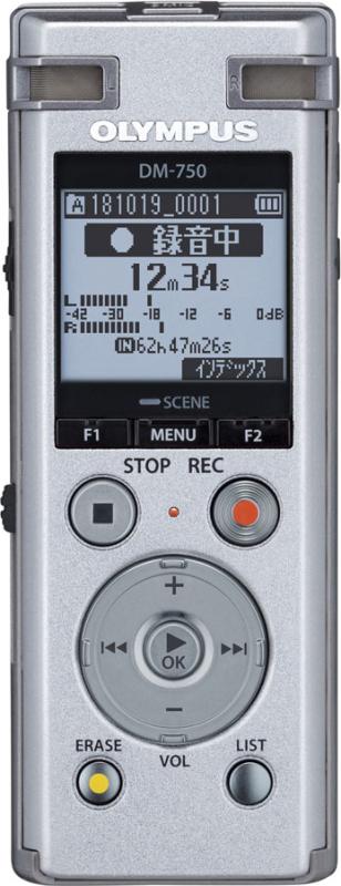 ボイストレック DM-750 SLV