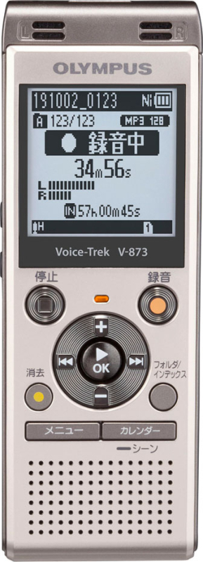 ボイストレック V-873 GLD