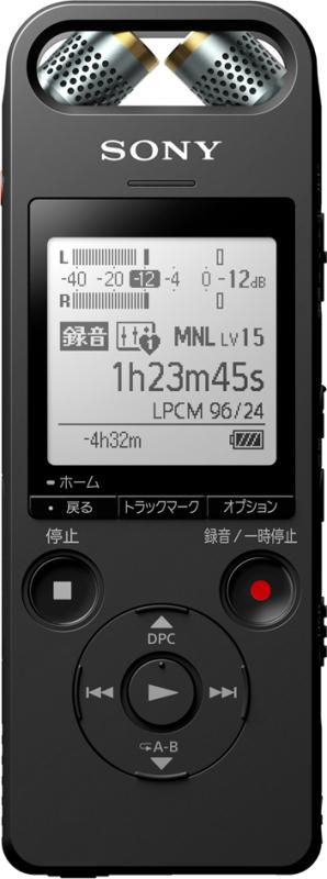ICD-SX2000