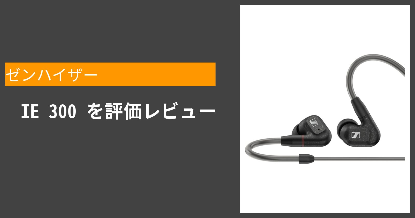 IE 300を徹底評価